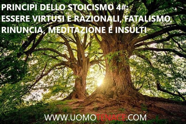 Come vivere una buona vita grazie ai principi dello stoicismo. #4 – Essere virtuosi e razionali, fatalismo, rinuncia, meditazione e insulti