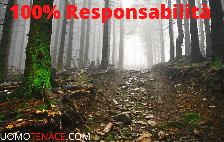 100% responsabilità